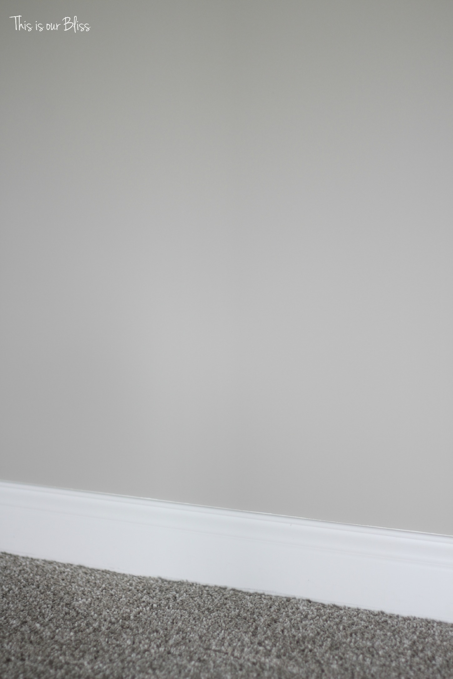 This is our Bliss - TIOB basement project - paint & carpet selection
