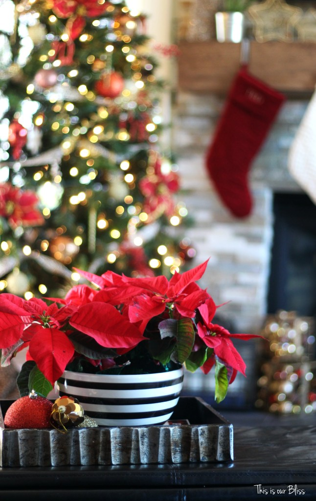 merry bright and blissful holiday home - family room - christmas tree - striped bowl with poinsettia - thisisourbliss.com