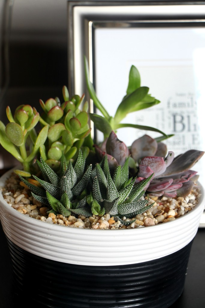 Summer Home Tour | Summer styled living room | succulents and fresh flowers | bold summer style | This is our Bliss | www.thisisourbliss.com