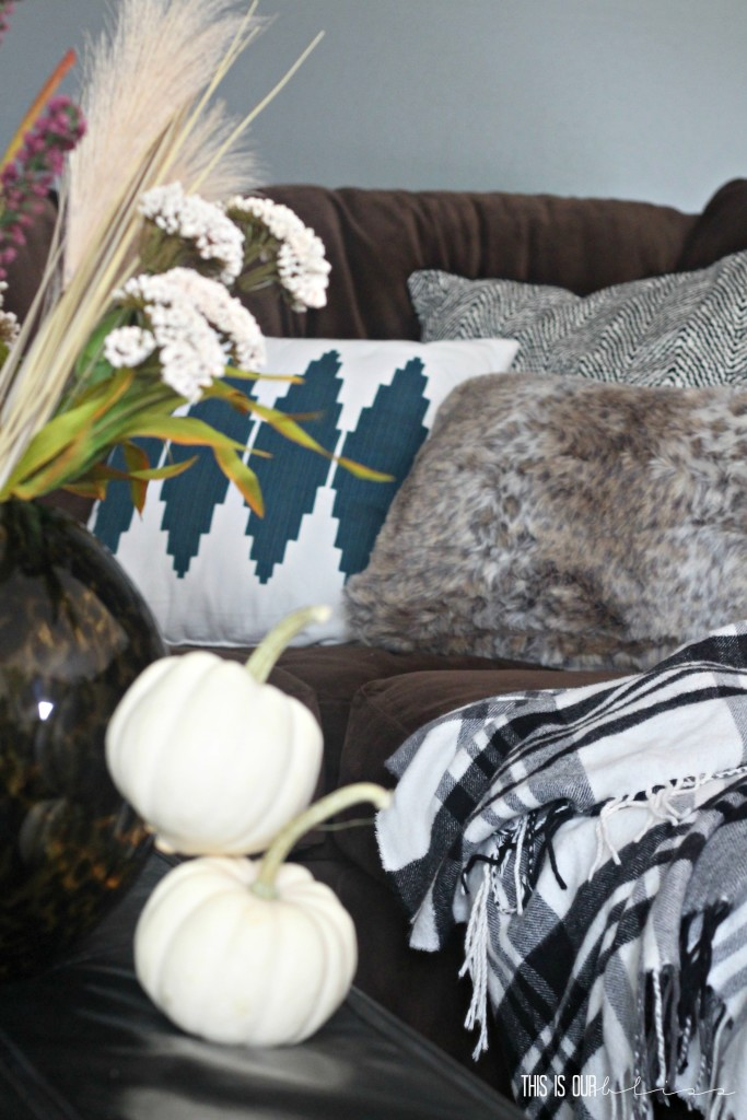Furry fuzzy pillows and throws for a cozy couch | This is our Bliss | www.thisisourbliss.com